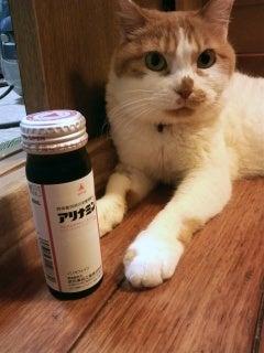 $みずたまりコのSFにっき ときどき猫とかチェロのこと