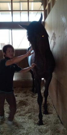$矢作厩舎オフィシャルブログ「よく稼ぎ、よく遊べ!」Powered by Ameba-ノア1