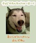 $竹内玲子オフィシャルブログ Powered by アメブロ-c