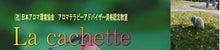 福岡のヒーリングサロン La cachette翌日報-La cachette