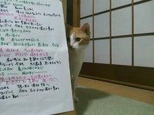 $はるちゃんとお昼寝☆
