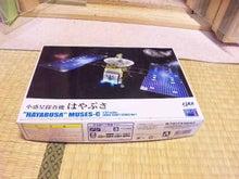 ヨウムのためちゃん日記-100714_222759.jpg