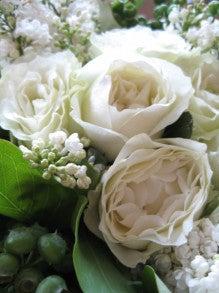 花に癒される生活 ◇◇◇Everyday Flower