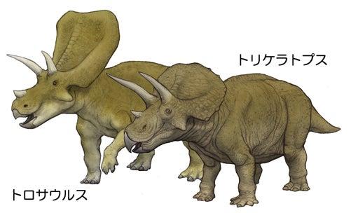 川崎悟司 オフィシャルブログ 古世界の住人 Powered by Ameba-トロサウルスとトリケラトプス