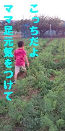 MYSON癒され日記☆息子4歳ママはエアロビクスインストラクター