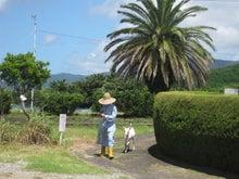 歩き人ふみの徒歩世界旅行 日本・台湾編-やぎと