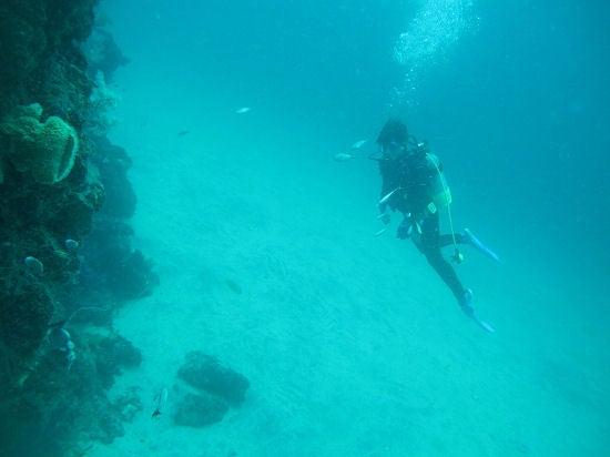 さとぴーの水中写真とか・・・-100723