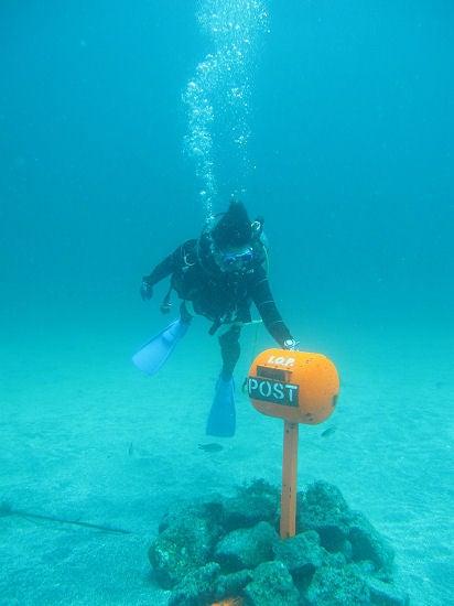 さとぴーの水中写真とか・・・-100724