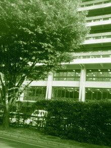 ◆ cinemazoo-奈良県庁