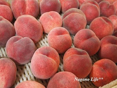 Nagano Life**-もも