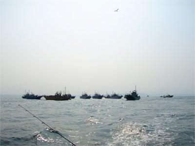 ゆる楽しいくらしづくり-太刀魚船団!