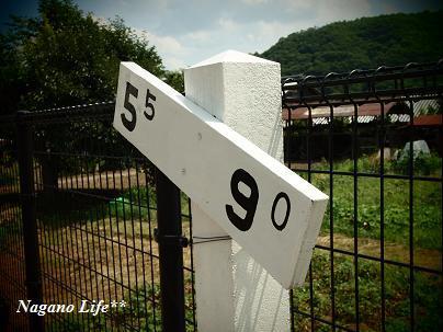 Nagano Life**-ホーム