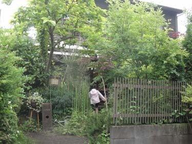 横浜発 驢馬人の美食な日々-Minka08