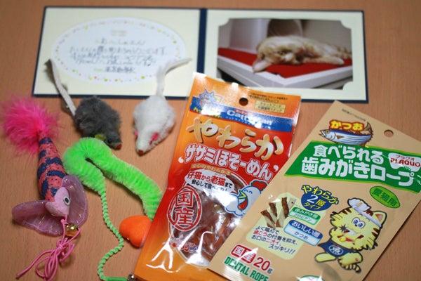 ワタコとショウゾウ-プレゼント1