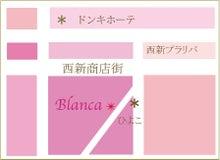 $Blanca staff blog