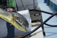 沖縄から遊漁船「アユナ丸」-釣果(22.06.30)