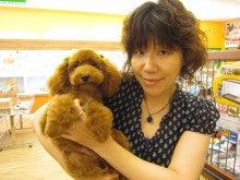 プチマリア福井店のブログ