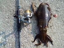 ソルトパラダイスの釣行記 シーバス エギンク ロックフィッシュ アジングまでなんでもやっちゃうよスペシャル-CA3F01930001.jpg