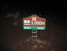 ぽれぽれカエルが雨に鳴く-FUJI01