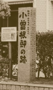 沢村惣之丞