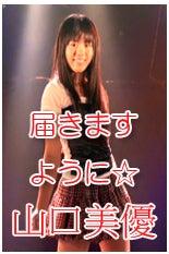 kotoraさんのしっぽ-山口美優