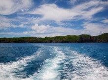 小笠原エコツアー 父島エコツアー         小笠原の旅情報と小笠原の自然を紹介します-パパヤ
