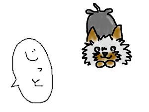 E*Kの犬といっしょ~ヨークシャテリアのケミと私~