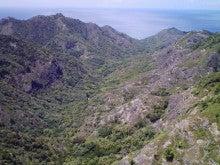 小笠原エコツアー 父島エコツアー         小笠原の旅情報と小笠原の自然を紹介します-20100826120801.jpg