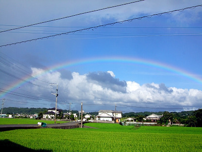 $あめんぼすいすい-虹