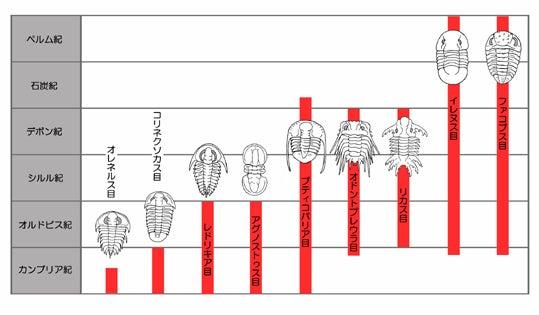 川崎悟司 オフィシャルブログ 古世界の住人 Powered by Ameba-三葉虫の種類と生息時期