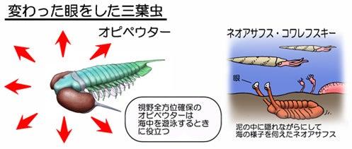 川崎悟司 オフィシャルブログ 古世界の住人 Powered by Ameba-変わった眼をした三葉虫