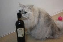 徒然青空日和-リキ王子ワイン