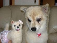 $わが愛犬を作りましょう!!? チェリママのスロー羊毛フェルト作り