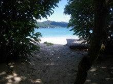 小笠原エコツアー 父島エコツアー         小笠原の旅情報と小笠原の自然を紹介します-前浜
