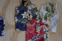 旅犬Lanileaのほほん風船記-ハワイへ持って行く服