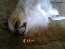 RENOA~レノア~-100907_153501_ed.jpg
