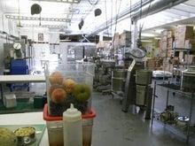 ローフード&マクロビオティックで美味しい生活♪-セントラルキッチン3.jpg