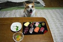 隊長特製にぎり寿司