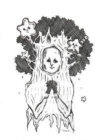…evergreen…