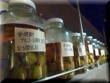 札幌にある不動産会社の経営企画室 カチョーのニチジョー-自家製梅酒