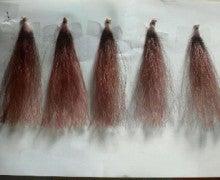 リアル美容師のホンネ。-2010090920540001.jpg