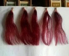 リアル美容師のホンネ。-2010090908580000.jpg