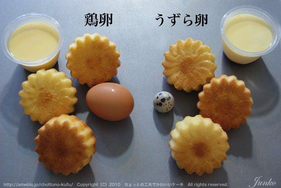 実験・うずらの卵でお菓子はできるのか?・プリン、マドレーヌ編|ちょっとの工夫でかわいいケーキ