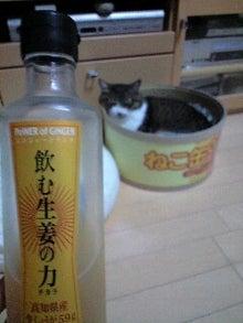 ずれずれブログ…湘南で猫と暮らせば…-100915_1814~0001.jpg