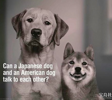 $∞最前線 通信-宝島者 日本の犬とアメリカの犬