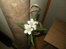 ~yukyaの乗馬ルーム~-床の間の花