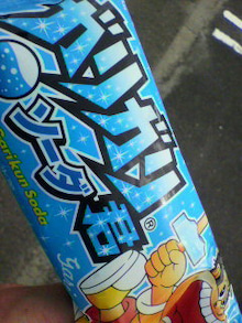 ☆蘭ラン日記☆ -2010092008540000.jpg