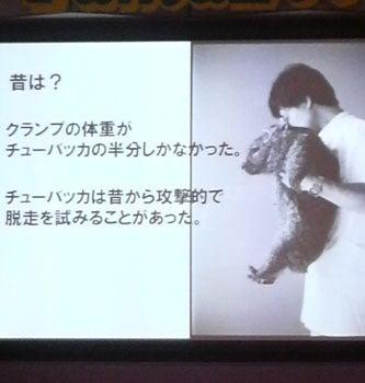 ウォンバット☆ウォンバット ~超・観察ブログ~-11