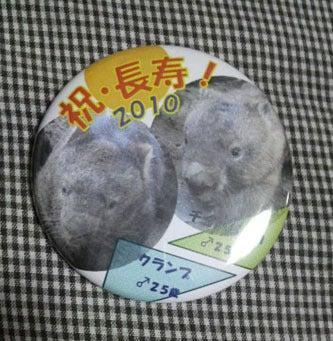 ウォンバット☆ウォンバット ~超・観察ブログ~-8