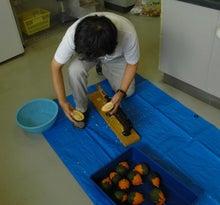 $パンプキンミッション 宇宙かぼちゃ栽培ブログ-果実を割る